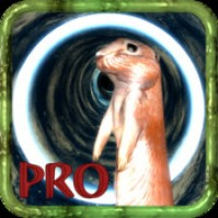 Down the Gopher Hole Pro HD